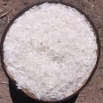 Cambodian White Rice_02